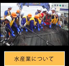漁業について