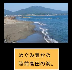 めぐみ豊かな陸前高田の海。