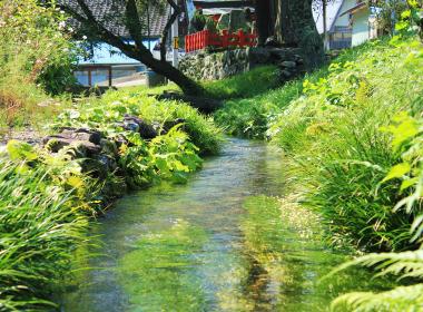 陸前高田の自然 イメージ